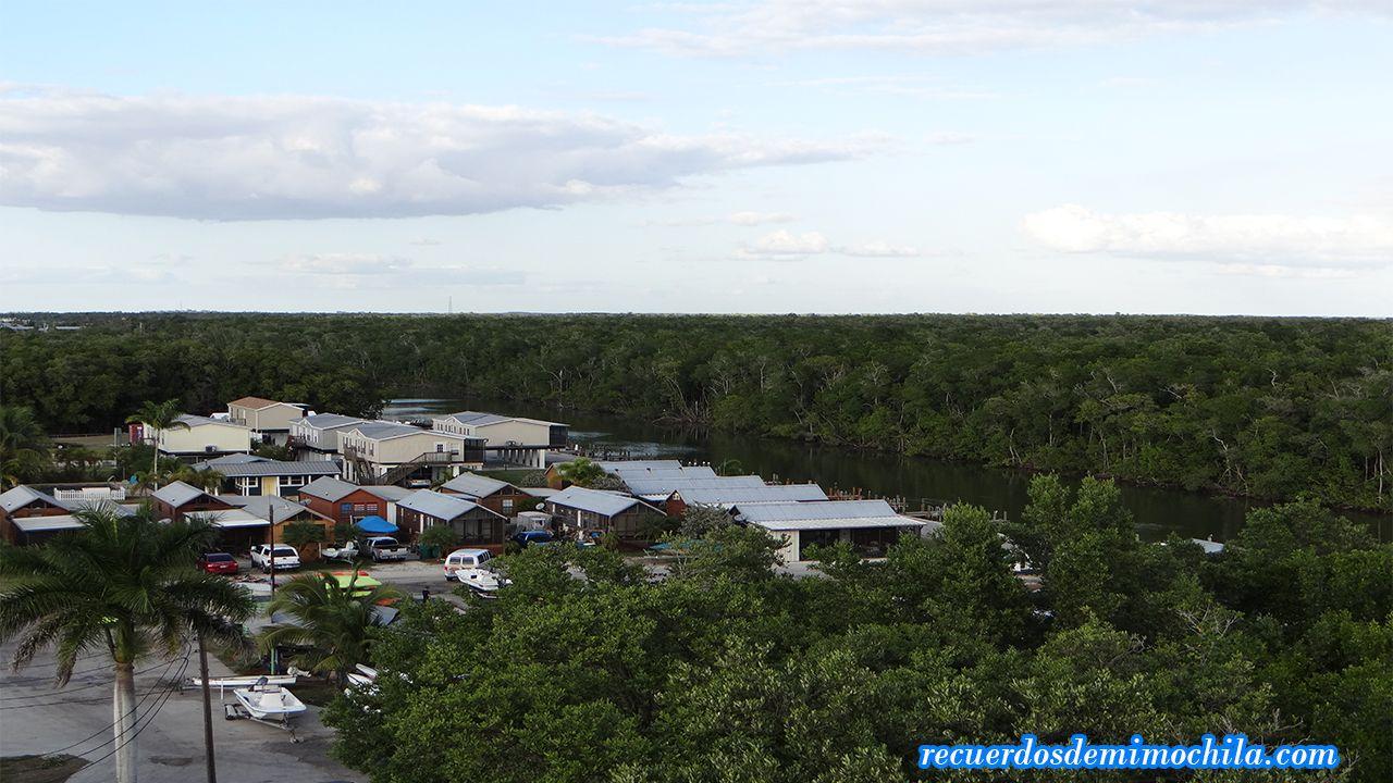 Visita a los Everglades y Big Cypress en un día