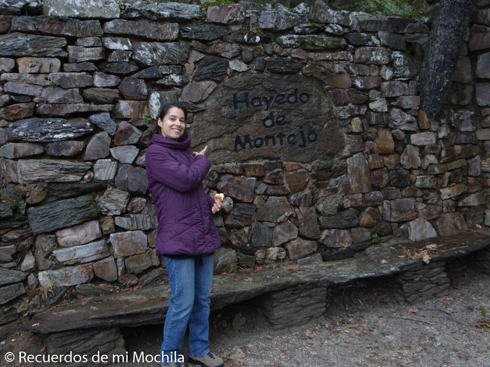 Reserva visitas Hayedo de Montejo