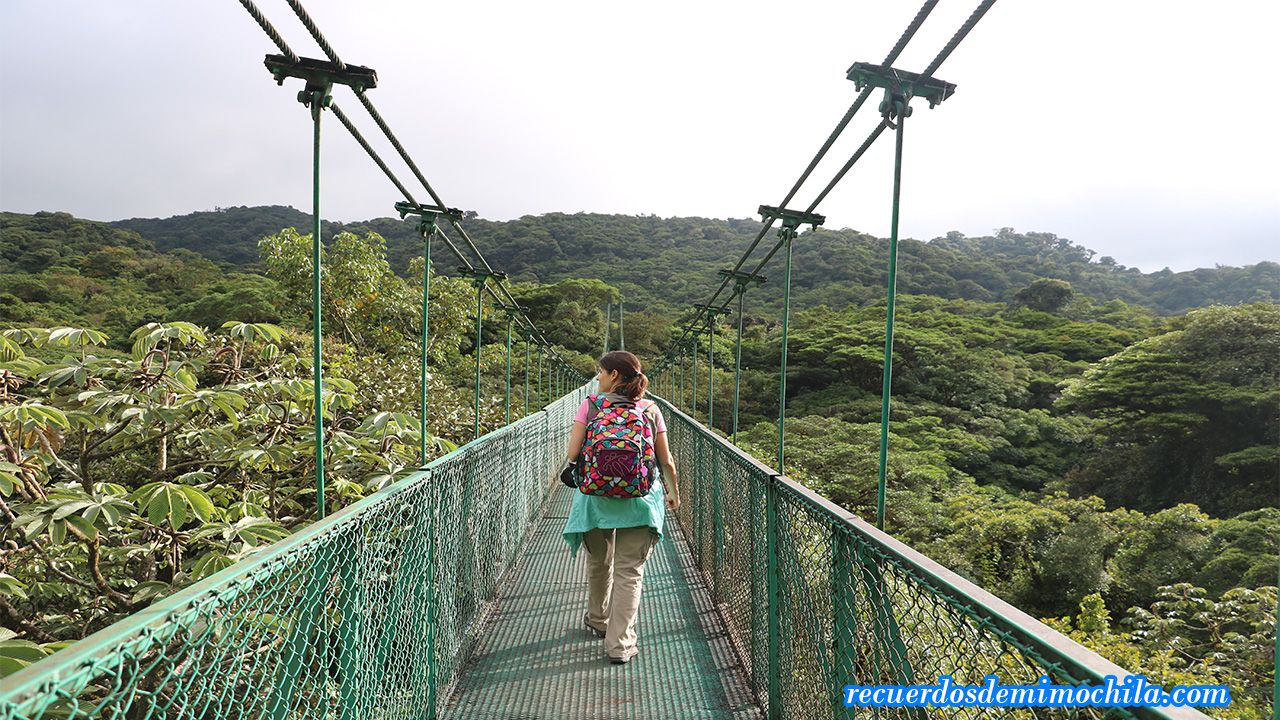 Mariposas, colibríes y puentes colgantes en Selvatura