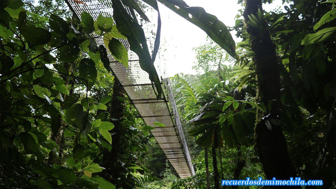 Puentes colgantes de la Fortuna Costa Rica
