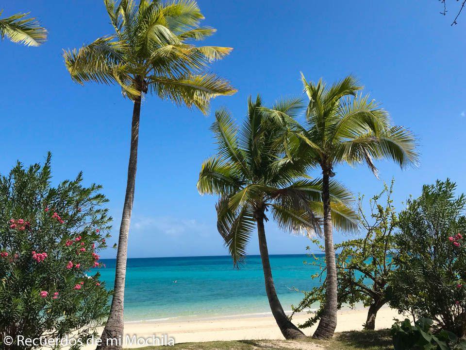 Qué ver en isla Contadora Panamá
