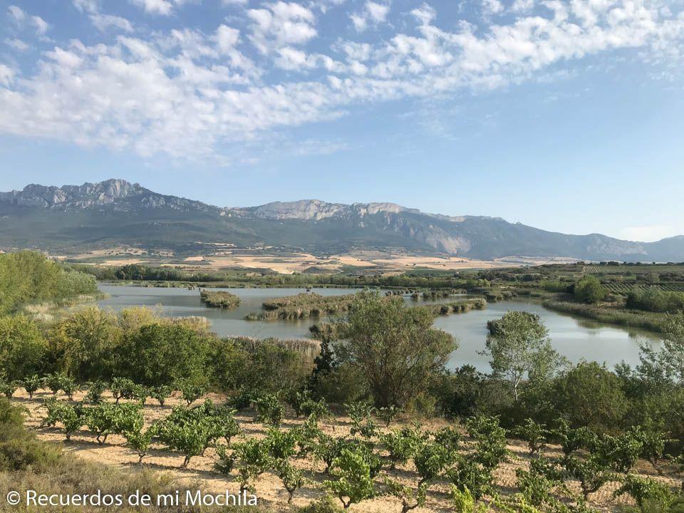Qué ver en Laguardia