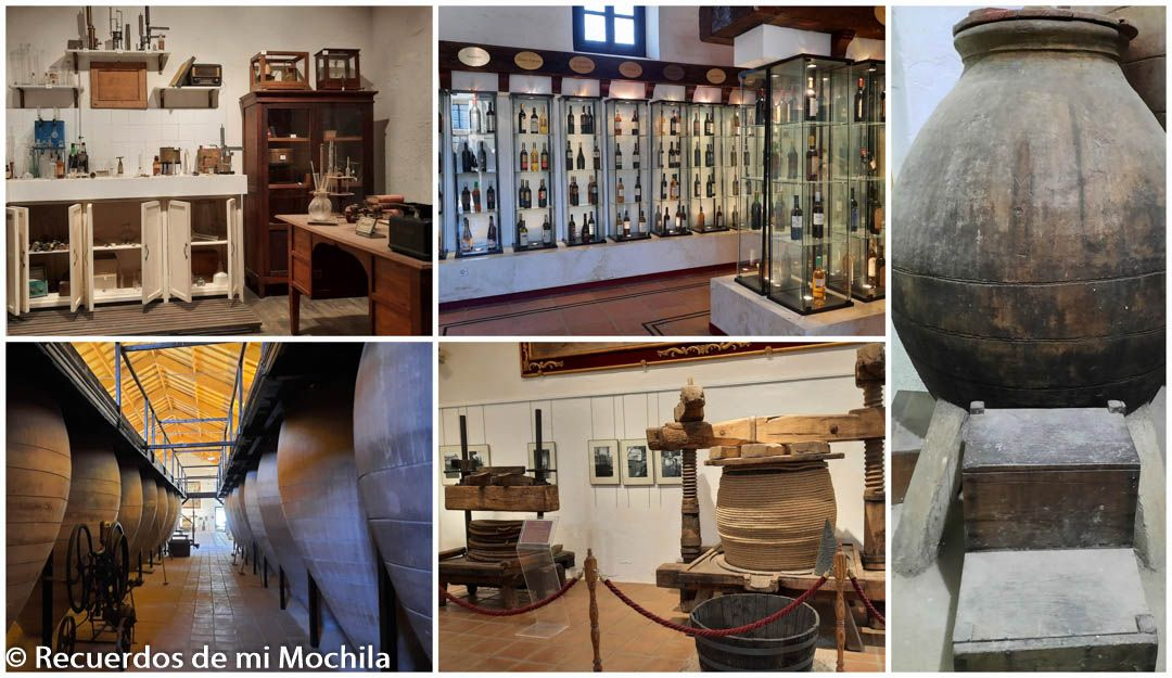 Museo del Vino valdepeñas